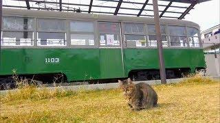 神戸市交通局1100形電車(兵庫区御崎公園で保存展示)