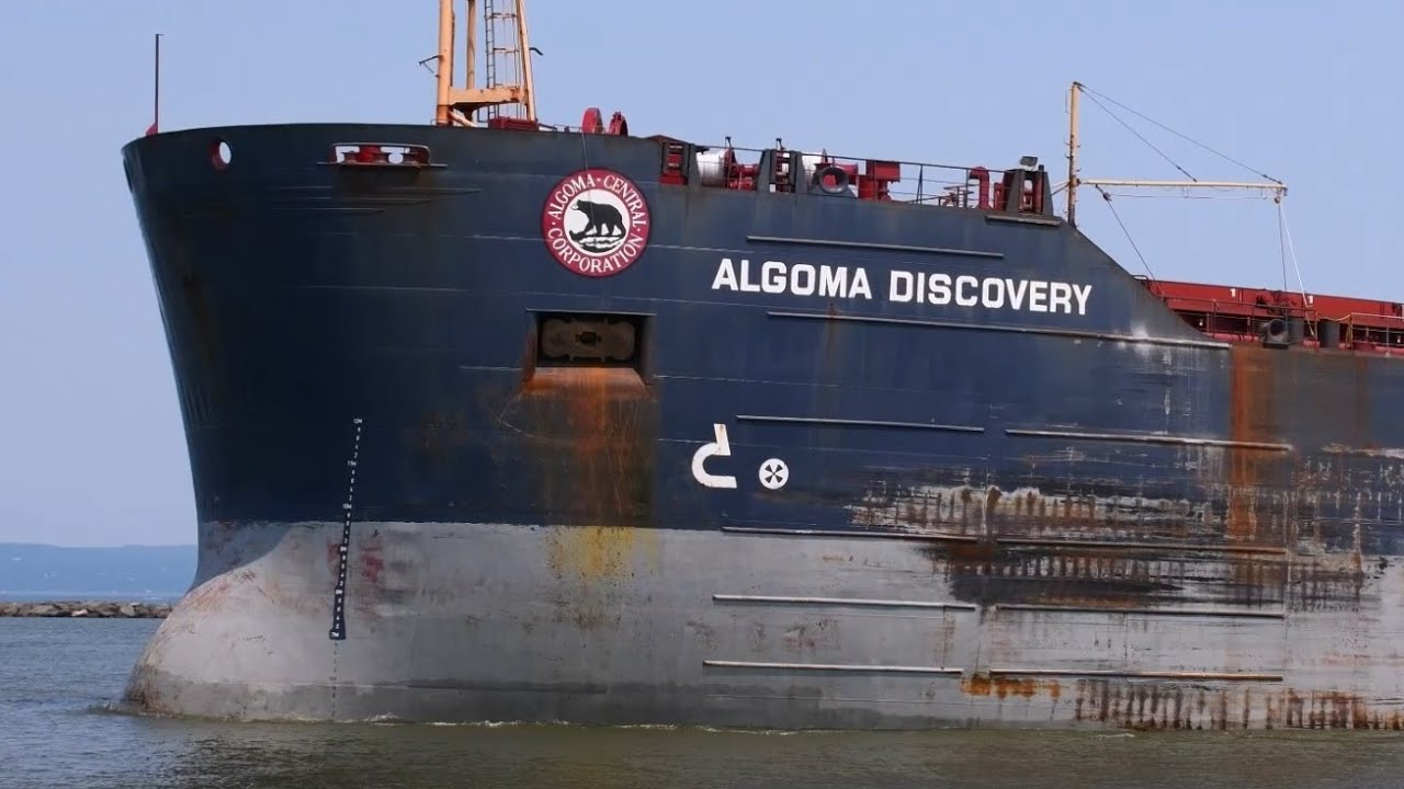Algoma Discovery - The Bear That Growls