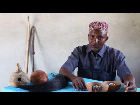 traditional african medicine D t okpako, professor, university of ibadan, department of pharmacology and therapeutics, po box 20334, ui post office, oyo road, ibadan, nigeria email: dpc@ibadan.
