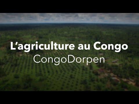 L'agriculture en RDC