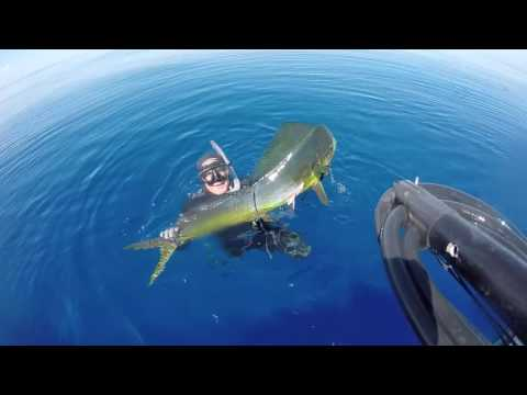 """Spearfishing in South Pacific New Caledonia """"du bleu dans les yeux"""""""