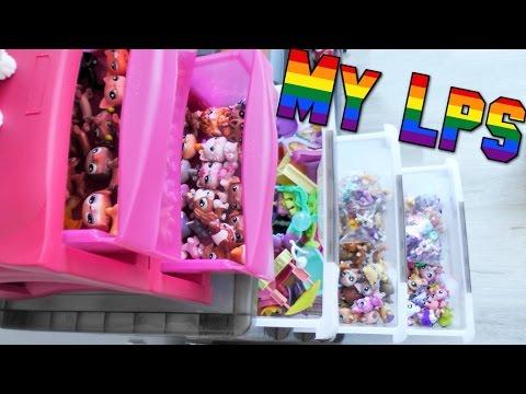 How I Organise My Lps & Accessories    DIY (Kinda)