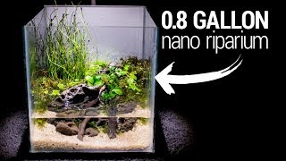 making-a-0-8-gallon-nano-riparium