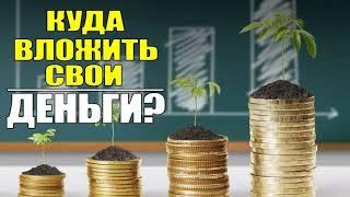 Круизеры! Учимся инвестировать вместе. Куда инвестировать? Как вернуть 52000 руб. каждый год.