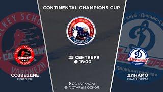 Созвездие г. Воронеж - Динамо г. Калининград