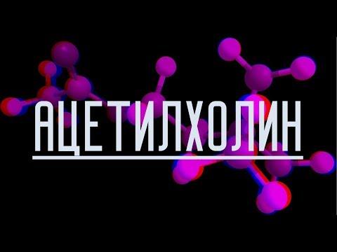 Химия мысли