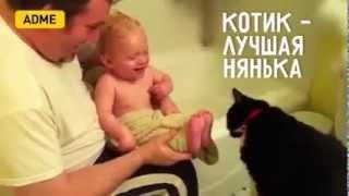 Котик лучшая нянька - Малышы и кошки (www.adme.ru)