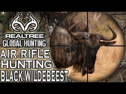 Benjamin Bulldog Big Bore Air Rifle Hunting in South Africa: Black Wildebeest
