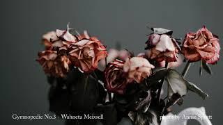 Gymnopedie No.3 - Wahneta Meixsell [BGM/배경음악]