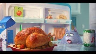 Тайная жизнь домашних животных - Трейлер (дублированный) 1080p(Смотрите трейлер нового мультфильма «Тайная жизнь домашних животных» (в кино с 18 августа 2016 года). http://news.melom..., 2015-06-19T04:31:59.000Z)