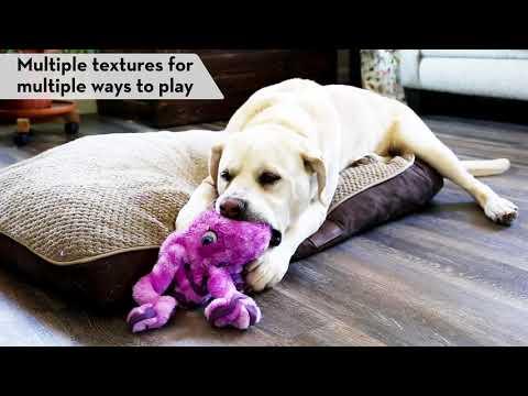 kong-softseas---dog-toy