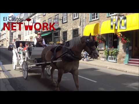 Quebec Vacation Travel Guide | El Castor Network™