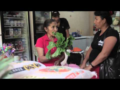 WFP Ecuador: Vouchers for improved nutrition