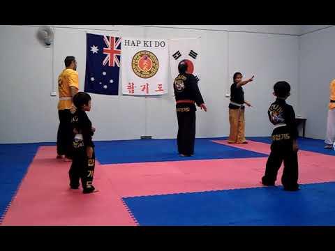 Hapkido Training