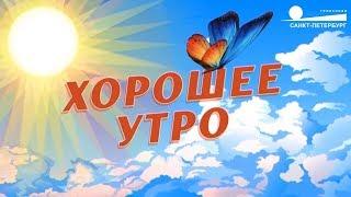 """Смотреть видео О туризме в эфире канала """"Санкт-Петербург"""" онлайн"""