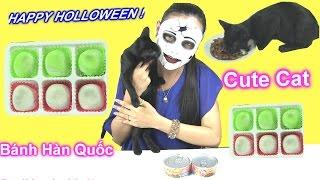 """Happy Halloween! Chị Bí Đỏ Ăn Thử Bánh Mochi Hàn Quốc & Mèo Sepper Ăn """"Cat Food """"Cực Ngon!"""