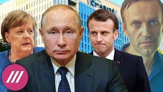 Как дорого Кремль готов платить за нерасследованное дело Алексея Навального / Мнение Михаила Фишмана