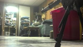savage mark 2 fv sr with suppressor indoors