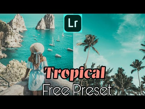 Free Tropical Style Preset For Lightroom Mobile   Tropical Style Preset    Free Lightroom Presets