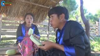 hmong movie tshiab
