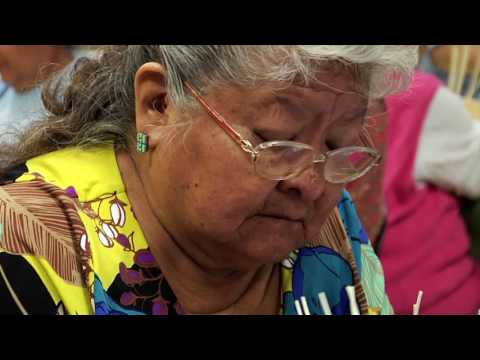 Chickasaw Nation Overview Including CNI