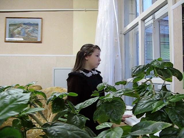 Изображение предпросмотра прочтения – АлександраГрибова читает произведение «Она сидела наполу…» Ф.И.Тютчева