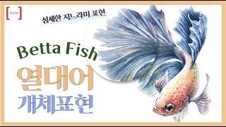 정현쌤의 영롱한 물고기 개체표현 섬세한 지느러미 표현부…