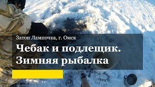 Чебак зимой. Зимняя ловля чебака и подлещика