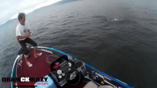 ドランクレイジー バーガーを使って琵琶湖で釣ってきました。 ロッド、...