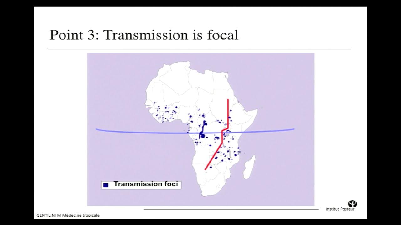 Trypanosomiase humaine africaine : nouvelles perspectives de ...