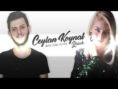 Alper Eğri Ft. Ceylan Koynat - Yasak (Remix) #Ünal Turan Special