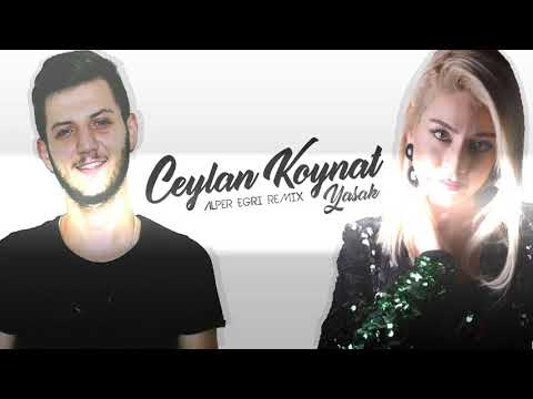 Alper Eğri Ft. Ceylan Koynat - Yasak (Remix)