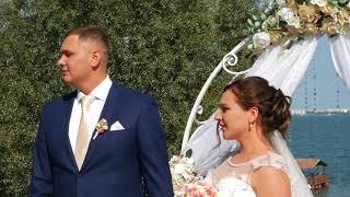 Свадьба Сергея и Светланы 01 09 2017г Поющий ведущий - Владимир Ботов.