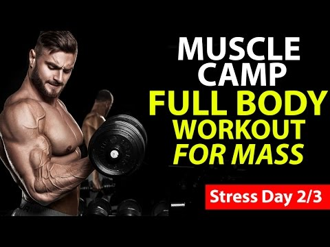 Best Full Body Workout Routine For Mass (STRESS DAY)