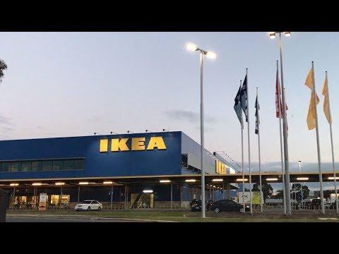 호주일상 Daily Vlog   IKEA 이케아    Asian food   아시아 요리 먹부림