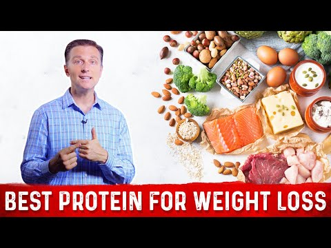 What Type of Protein Works Best for Weight Loss?