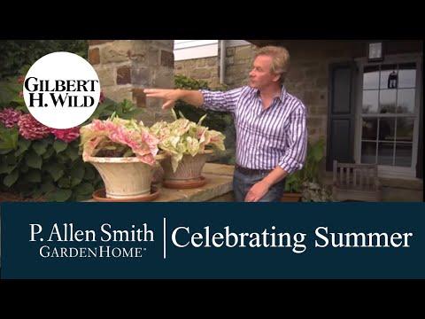 """Garden Home """"Celebrating Summer"""""""