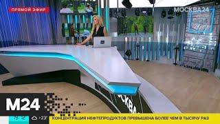 Фото В Подмосковье с 1 июля разрешат прогулки и занятия спортом - Москва 24