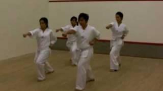 tae kwon do pattern no.1