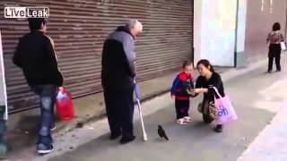 Old Man Takes his Bird for a Walk Thumbnail