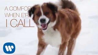 Ron Sexsmith - Saint Bernard (Official Lyric Video)