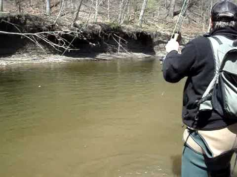 Fishing for steelhead on the vermillion river ohio youtube for Trout fishing in ohio