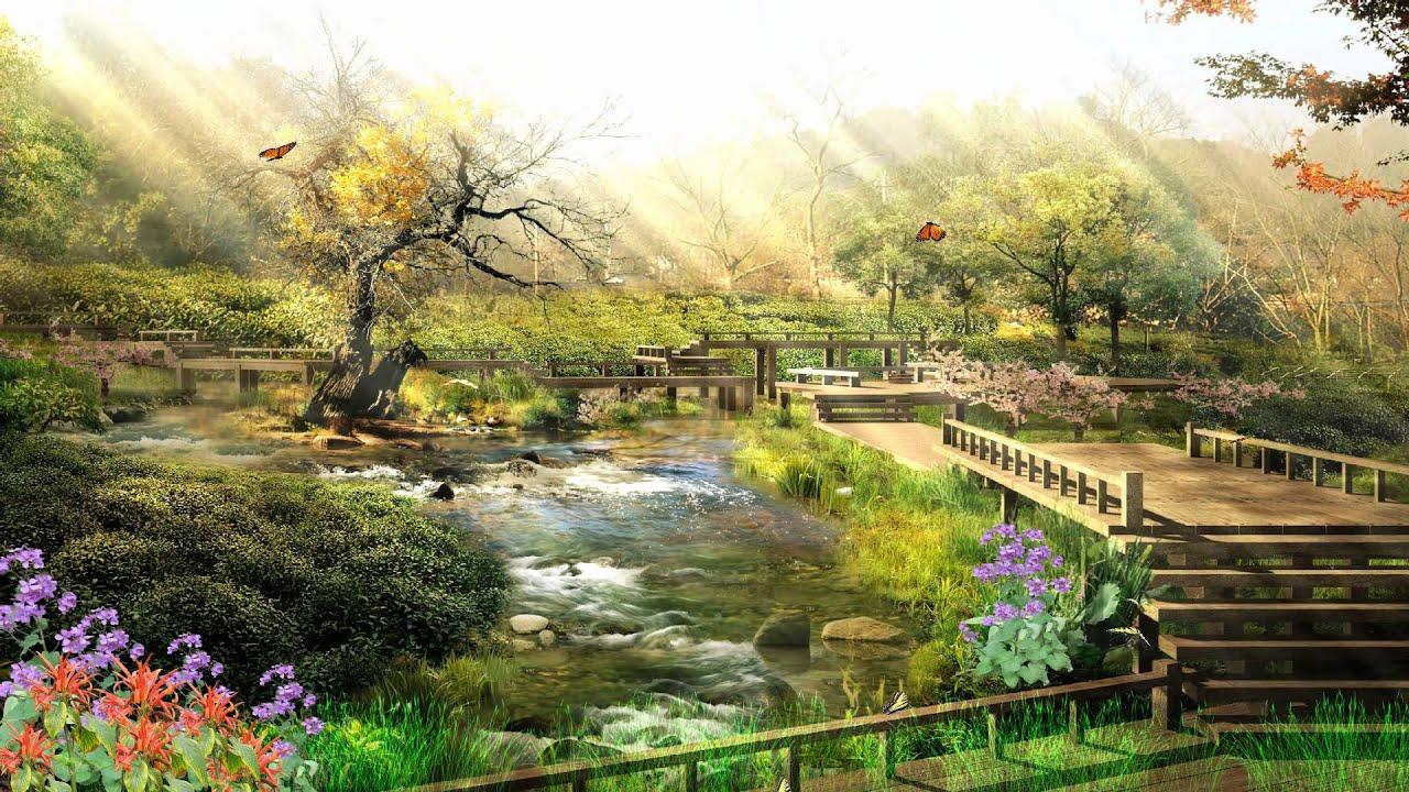 Relaxing nature wallpaper