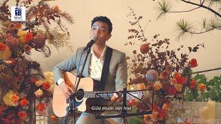 Hoàng Dũng - Chưa Bao Giờ (Acoustic Live Version at Mây Lang Thang)