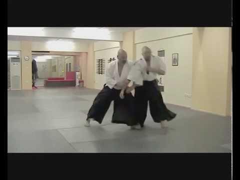 Peter Spangfort - tsuki waza