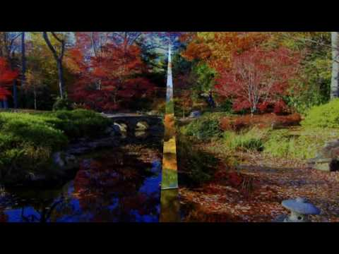 THE AUTUMN LEAVES  SMOOTH JAZZ