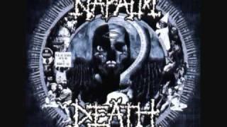 napalm death fatalist.wmv