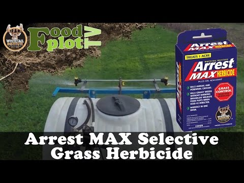 Whitetail Institute's Arrest MAX Selective Grass Herbicide
