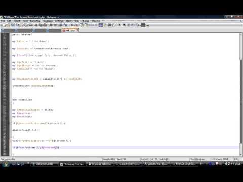 Perl CGI script
