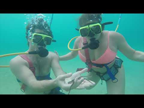 Cayman Islands snuba Adventure